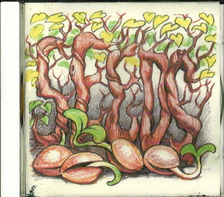 "1998. Sky ""Sunlight"" Saxon, ""Summer Of Love"". Seeds."